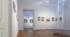 06 – Vue d'ensemble, Expo Villa Vauban (2019)