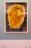 12 – Soleil 2, lithographie, 57×79.5cm, collection privée